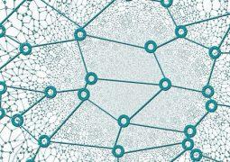 investor networks