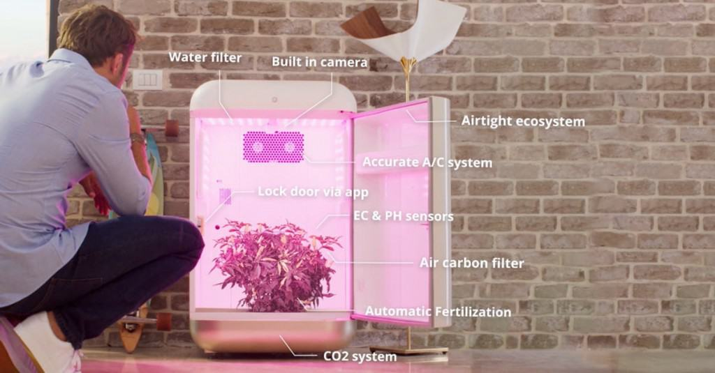 SeedoLab automated grow box