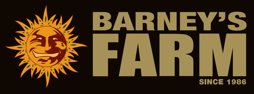 Barneys Farm review