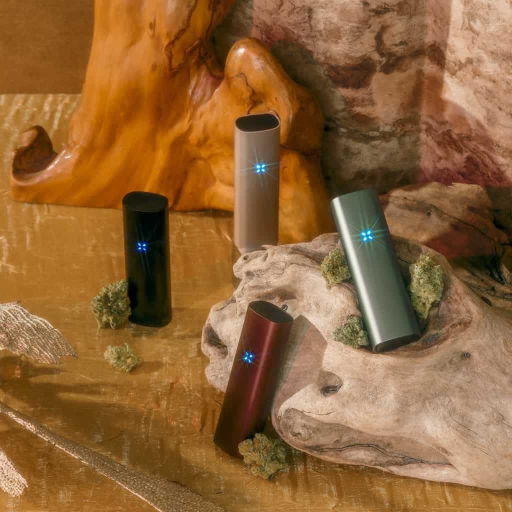 PAX3 reviewed