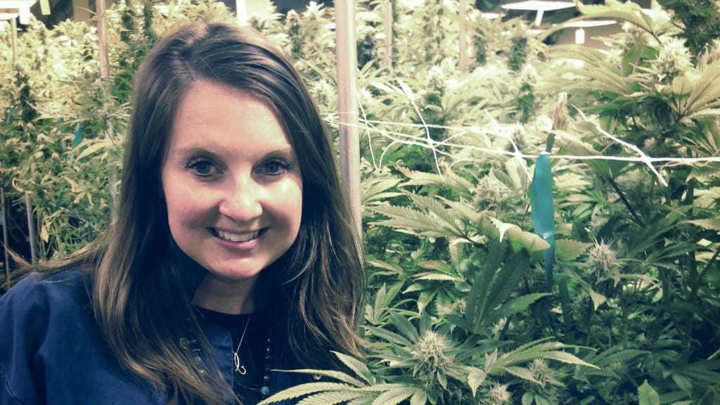 Women In Cannabis: 3 Inspiring Avenues for Professional Success