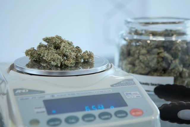 marijuana measurements explained