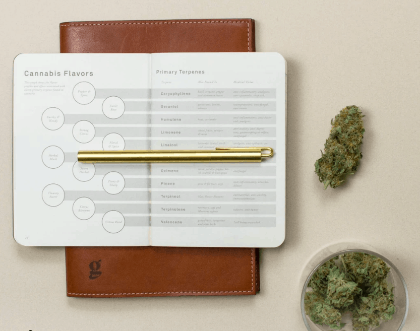 cannabis tasting journal