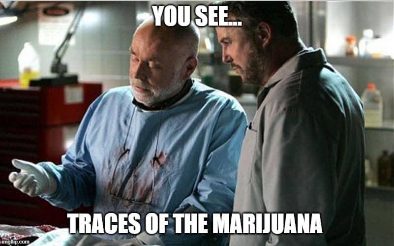 weed test meme