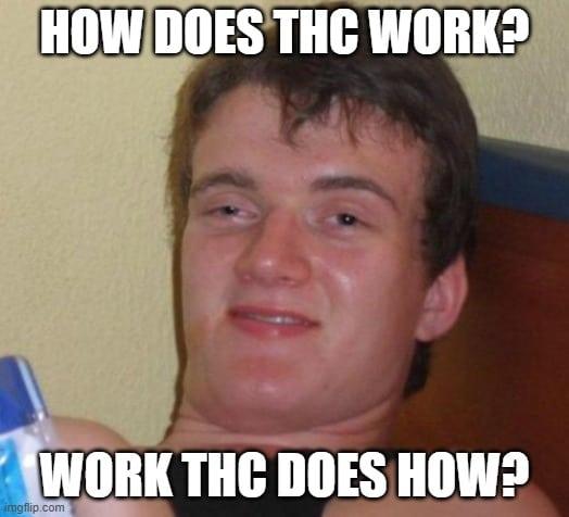 ultimate stoner meme