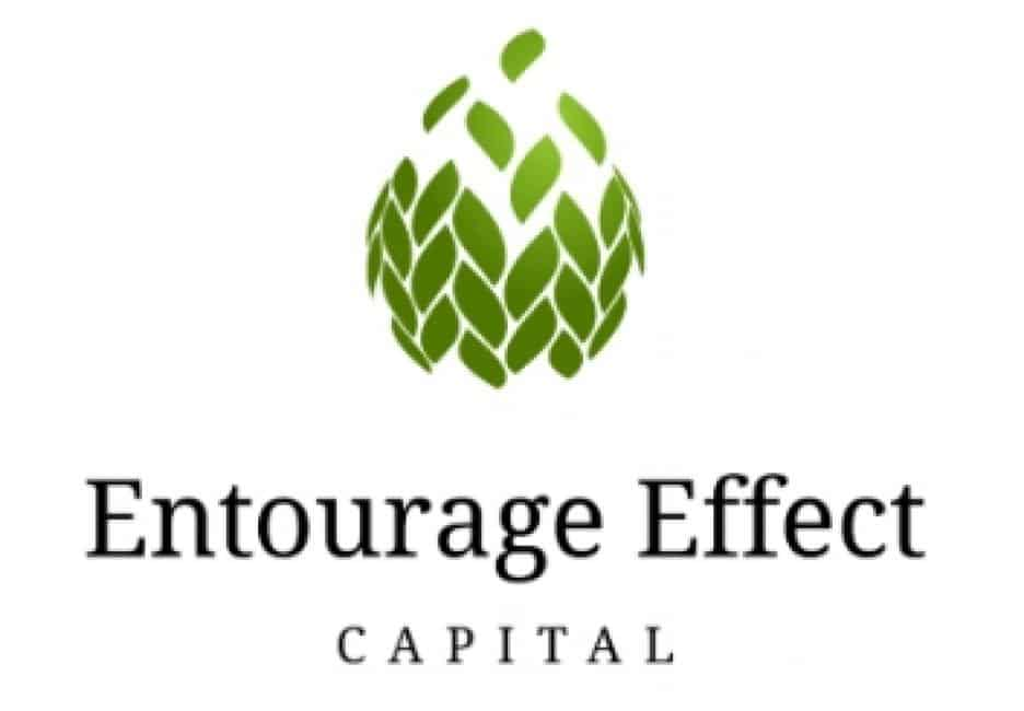 Big & Famous Venture Capital Funds & Private Equity Firms in Cannabis