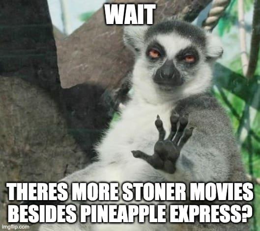 stoner movie meme