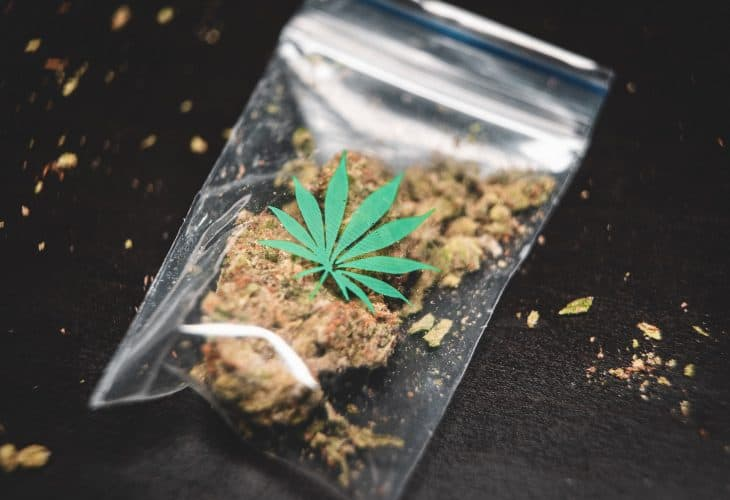 cannabis franchising
