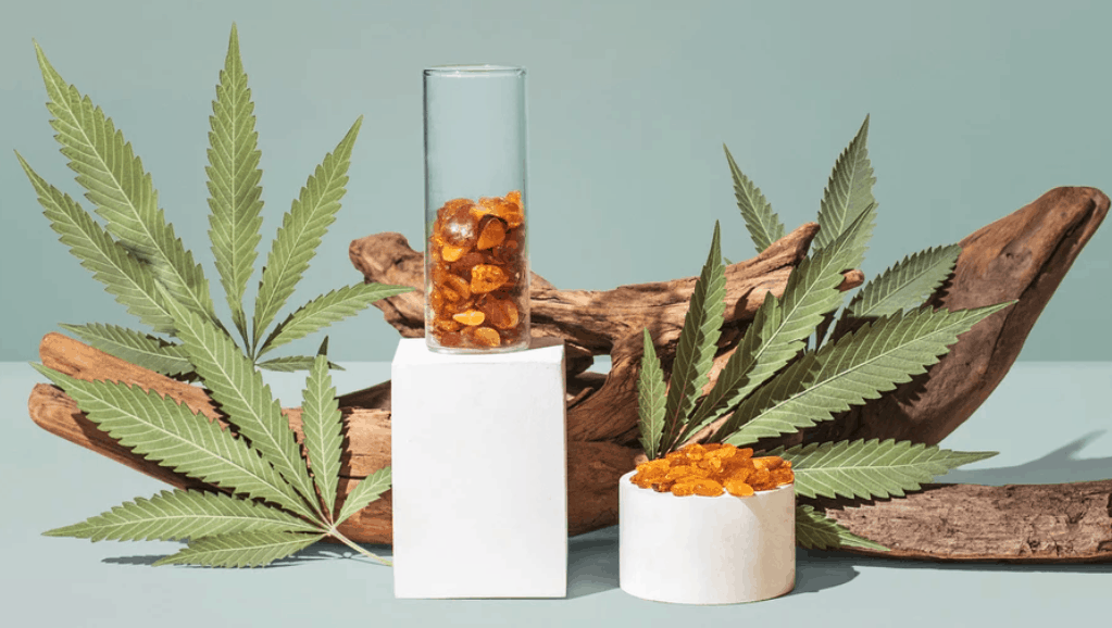 The Wooden Wick Co cannabis oil