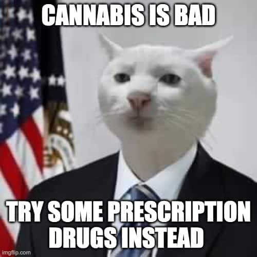 government cannabis policy meme