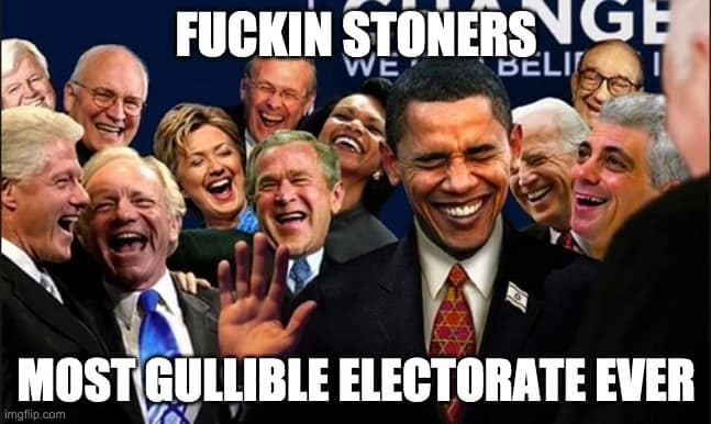 politicians and cannabis