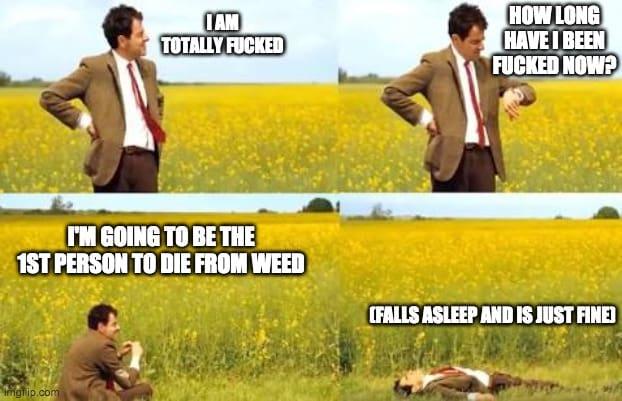 too high meme